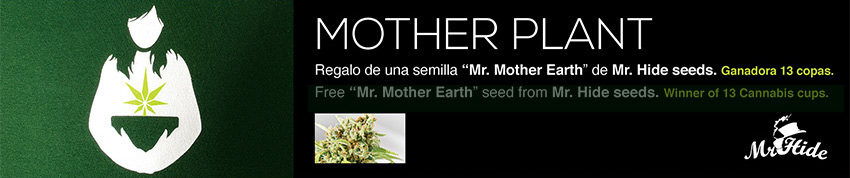 motherplant mother earth mr hide seeds
